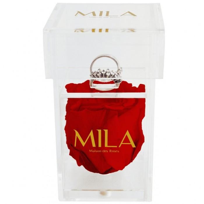 Mila Acrylic Single Ring