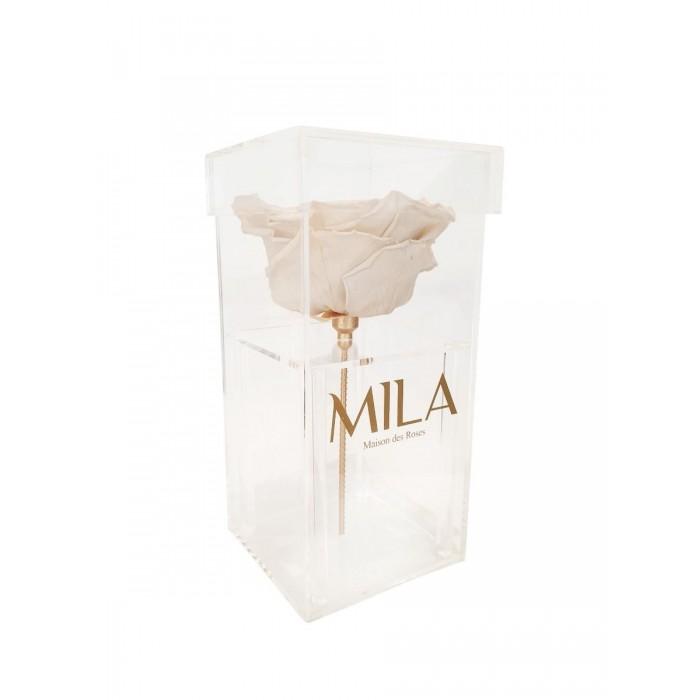 Mila Acrylic Single XXL