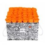 Mila-Roses-01511 Mila Limited Edition Cochain - Orange Bloom