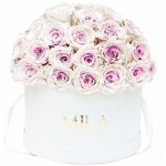 Mila-Roses-01550 Mila Classique Large Dome White - Pink bottom