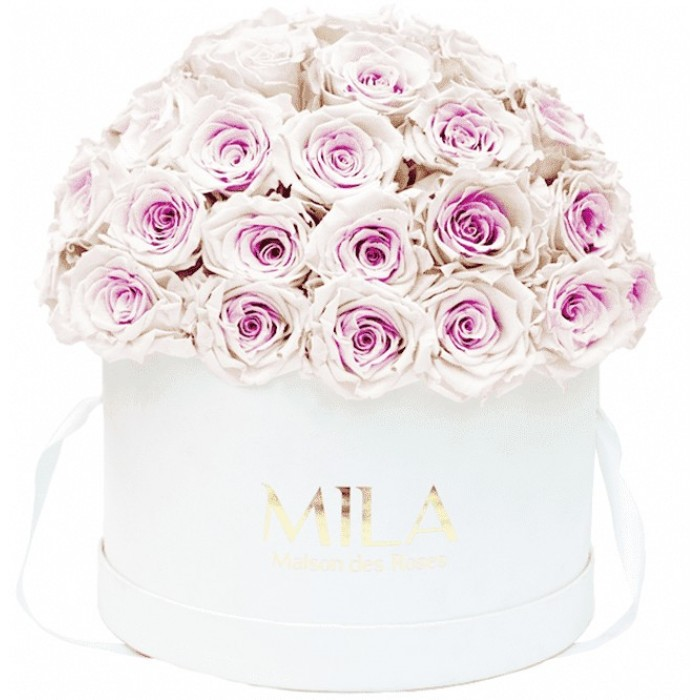 Mila Classique Large Dome White - Pink bottom