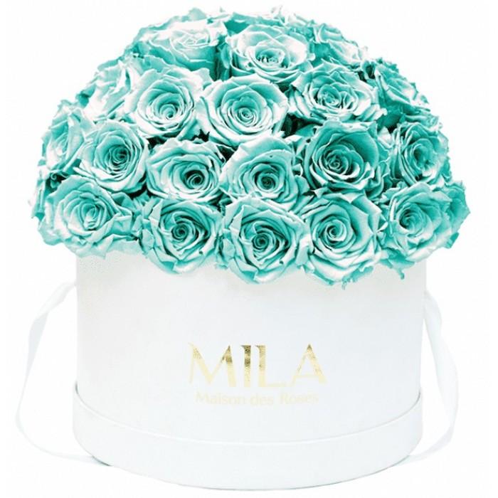 Mila Classique Large Dome White - Aquamarine