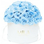 Mila-Roses-01559 Mila Classique Large Dome White - Baby blue