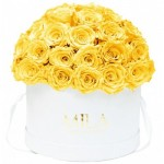 Mila-Roses-01560 Mila Classique Large Dome White - Yellow Sunshine