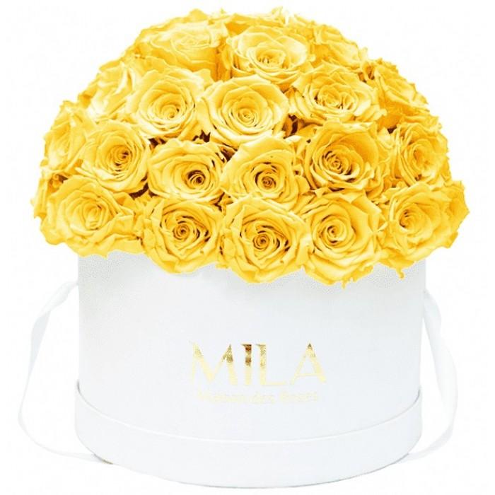 Mila Classique Large Dome White - Yellow Sunshine