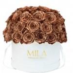 Mila-Roses-01561 Mila Classique Large Dome White - Metallic Copper