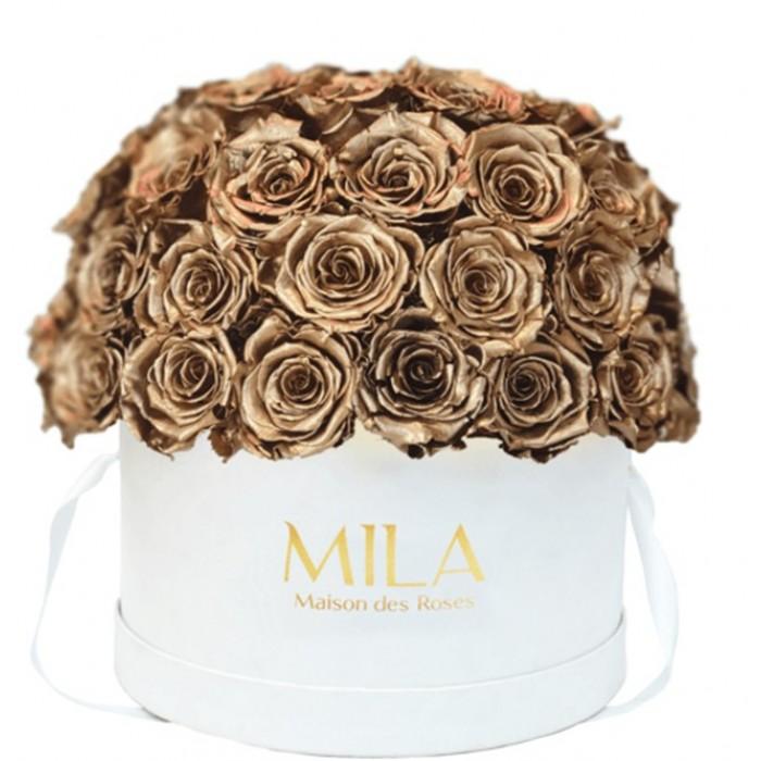 Mila Classique Large Dome White - Metallic Gold