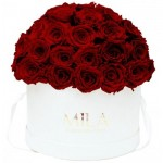 Mila-Roses-01566 Mila Classique Large Dome White - Rubis Rouge