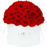Mila-Roses-01567 Mila Classique Large Dome White - Rouge Amour