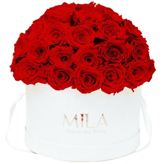 Mila Classique Large Dome White - Rouge Amour