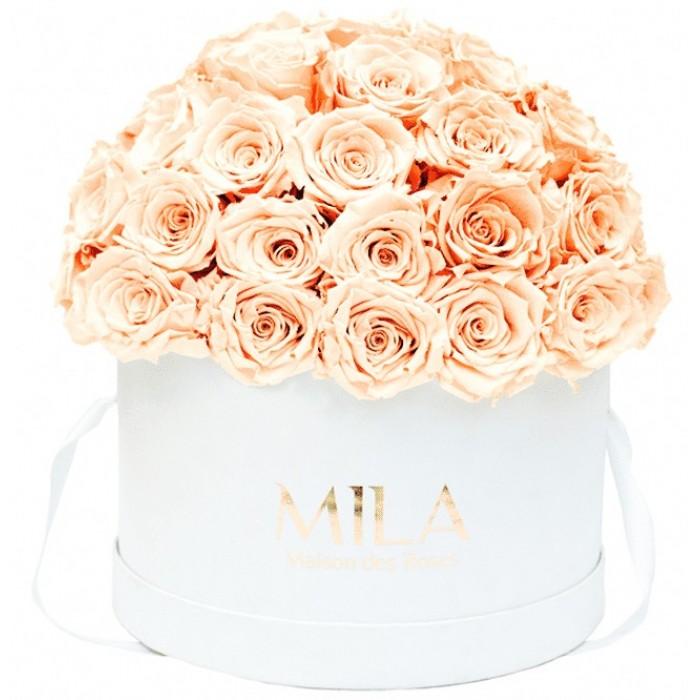 Mila Classique Large Dome White - Pure Peach