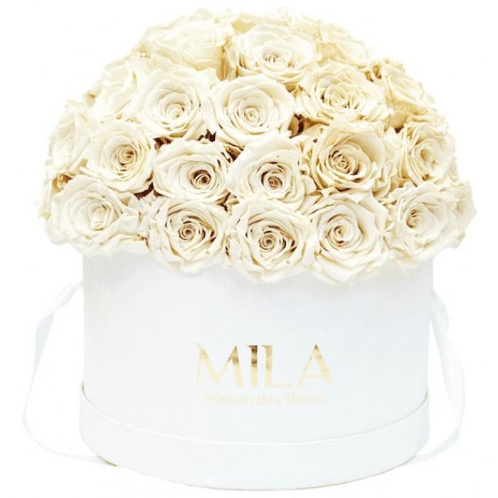 Mila Classique Large Dome White - White Cream