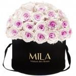 Mila-Roses-01577 Mila Classique Large Dome Black - Pink bottom