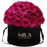Mila-Roses-01579 Mila Classique Large Dome Black - Fuchsia