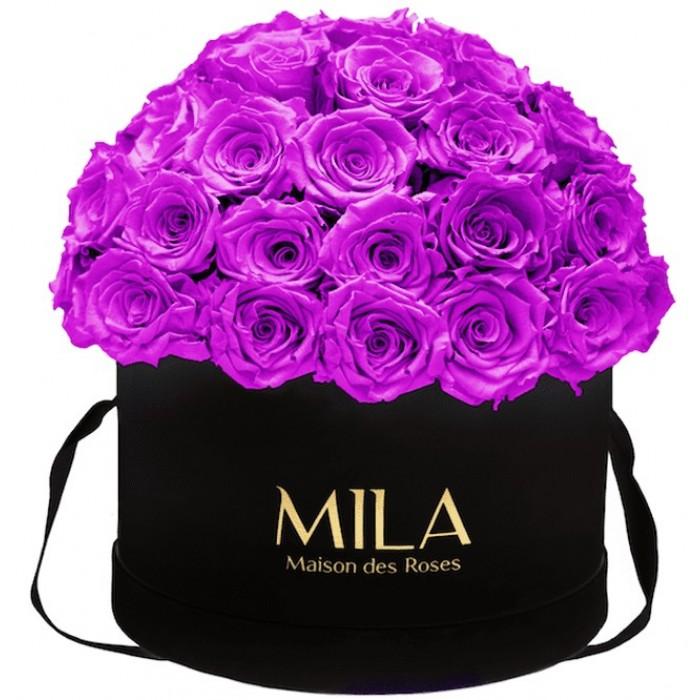 Mila Classique Large Dome Black - Violin