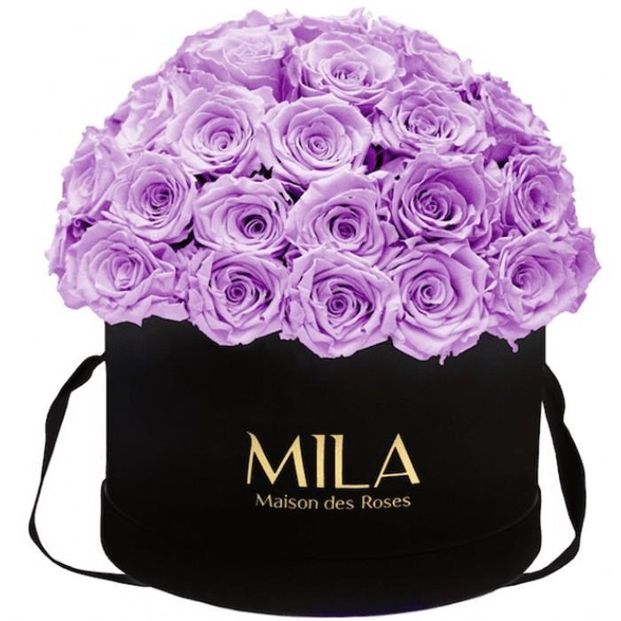 Mila Classique Large Dome Black - Lavender
