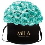 Mila-Roses-01585 Mila Classique Large Dome Black - Aquamarine