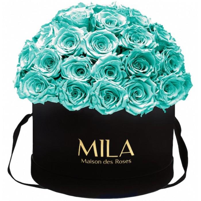 Mila Classique Large Dome Black - Aquamarine