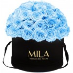 Mila-Roses-01586 Mila Classique Large Dome Black - Baby blue