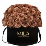 Mila-Roses-01588 Mila Classique Large Dome Black - Metallic Copper