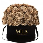 Mila-Roses-01590 Mila Classique Large Dome Black - Metallic Gold