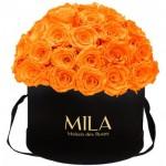 Mila-Roses-01592 Mila Classique Large Dome Black - Orange Bloom
