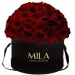 Mila-Roses-01593 Mila Classique Large Dome Black - Rubis Rouge