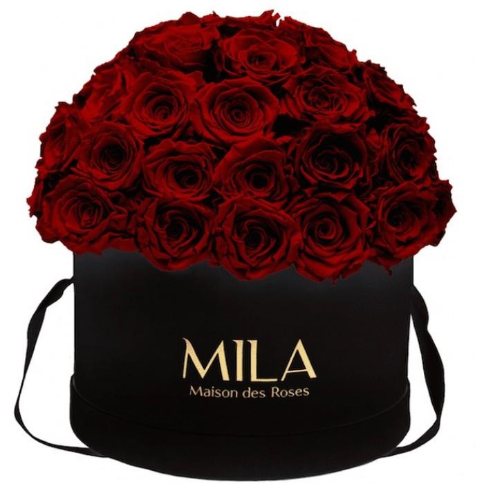 Mila Classique Large Dome Black - Rubis Rouge
