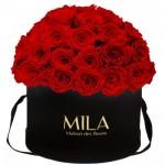 Mila-Roses-01594 Mila Classique Large Dome Black - Rouge Amour
