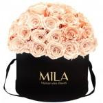 Mila-Roses-01595 Mila Classique Large Dome Black - Pure Peach