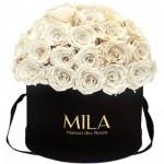 Mila-Roses-01599 Mila Classique Large Dome Black - White Cream