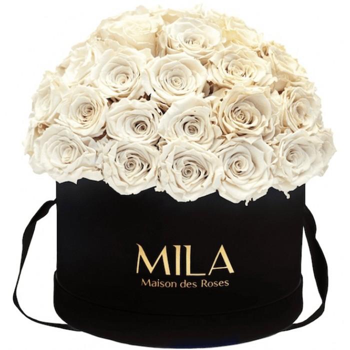 Mila Classique Large Dome Black - White Cream