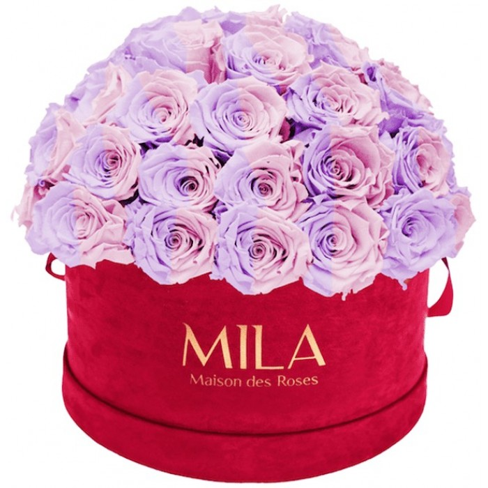 Mila Classique Large Dome Burgundy - Vintage rose