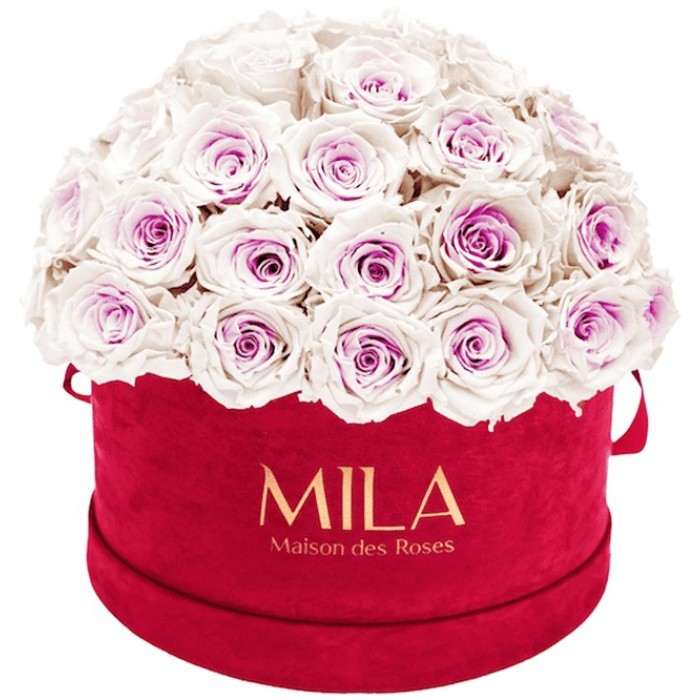 Mila Classique Large Dome Burgundy - Pink bottom