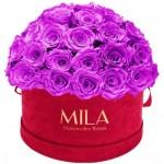 Mila-Roses-01608 Mila Classique Large Dome Burgundy - Violin