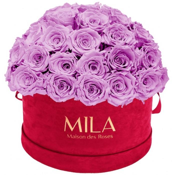 Mila Classique Large Dome Burgundy - Mauve