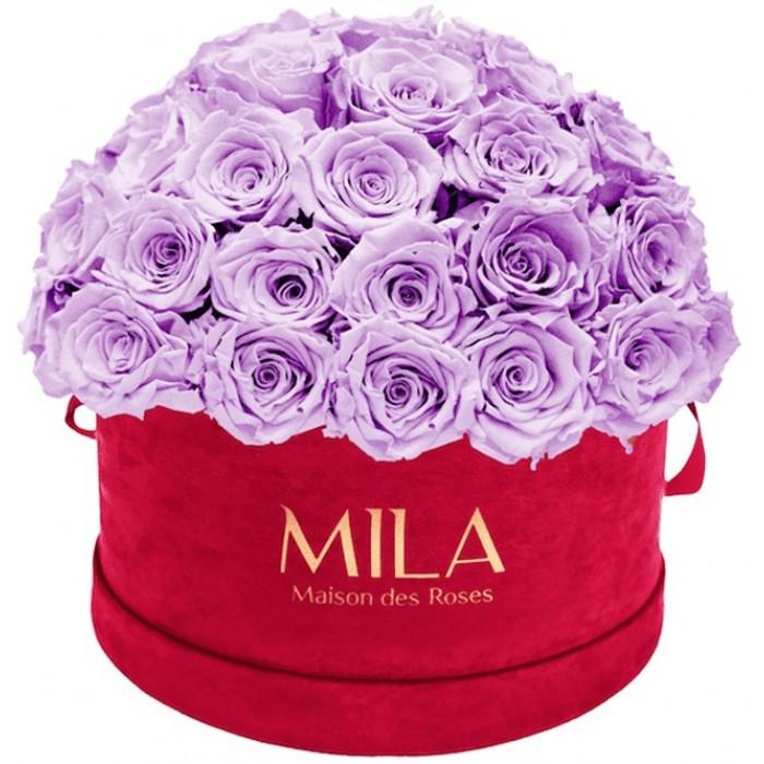 Mila Classique Large Dome Burgundy - Lavender