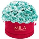 Mila-Roses-01612 Mila Classique Large Dome Burgundy - Aquamarine