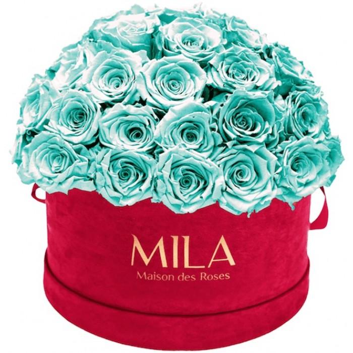 Mila Classique Large Dome Burgundy - Aquamarine