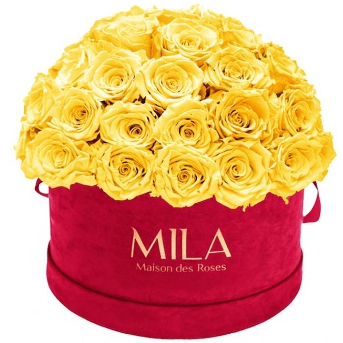 Mila Classique Large Dome Burgundy - Yellow Sunshine