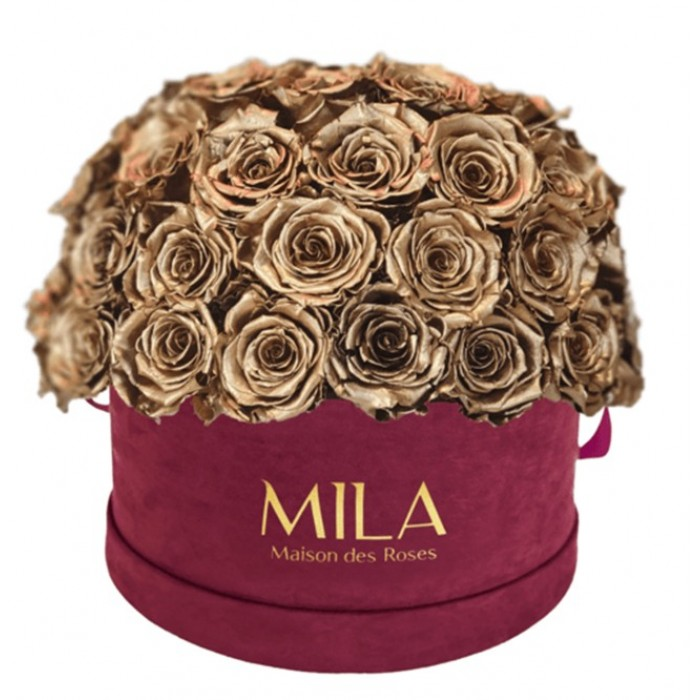 Mila Classique Large Dome Burgundy - Metallic Gold