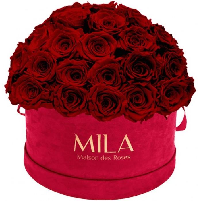 Mila Classique Large Dome Burgundy - Rubis Rouge