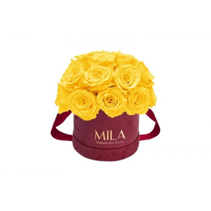 Mila Classique Small Dome Burgundy - Yellow Sunshine