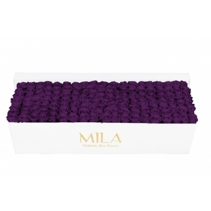 Mila Classic Royal White - Velvet purple