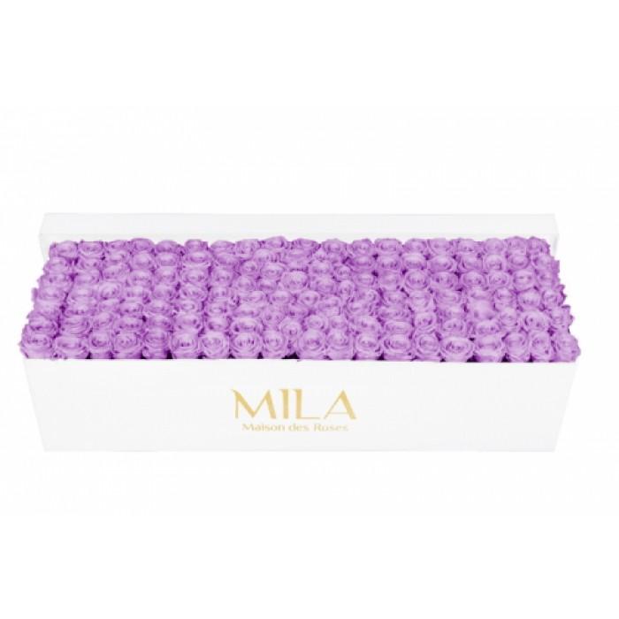 Mila Classic Royal White - Lavender