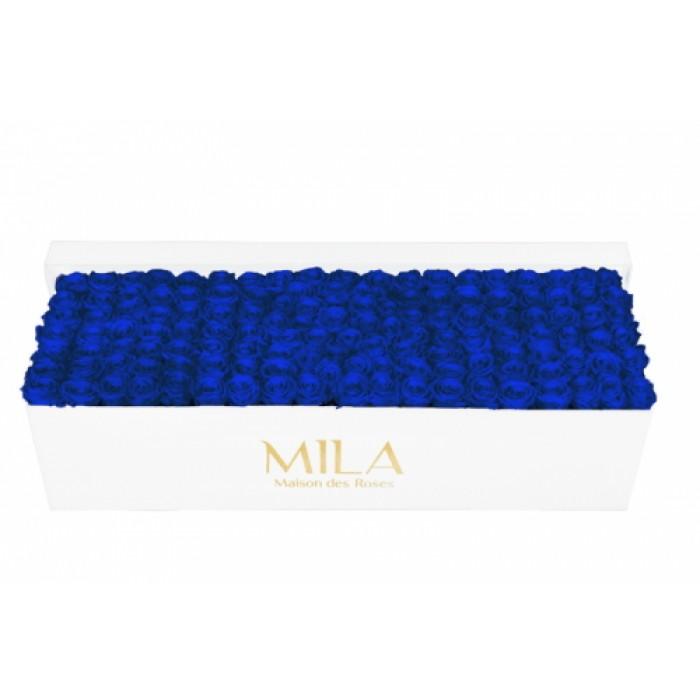 Mila Classic Royal White - Royal blue