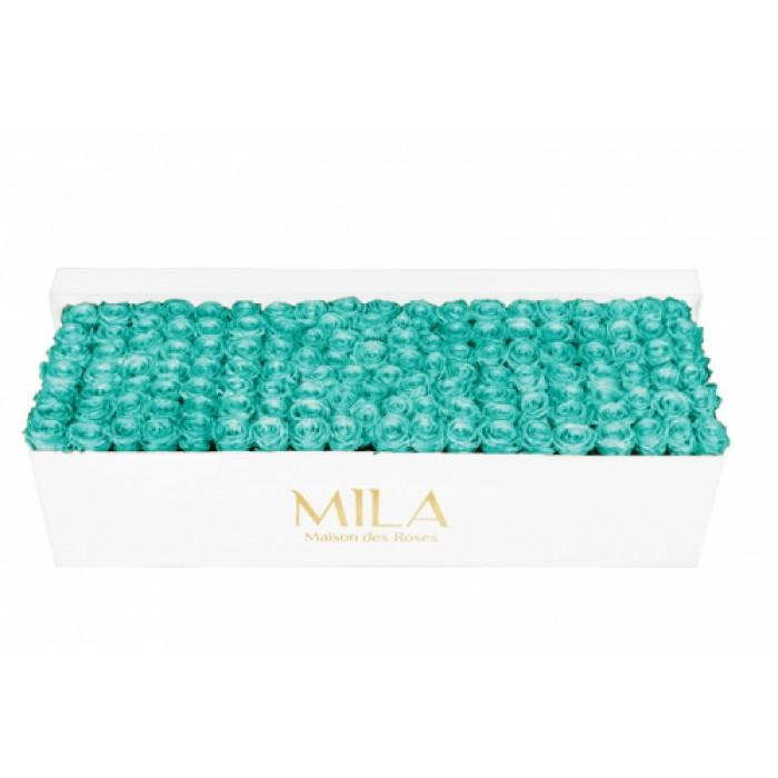 Mila Classic Royal White - Aquamarine