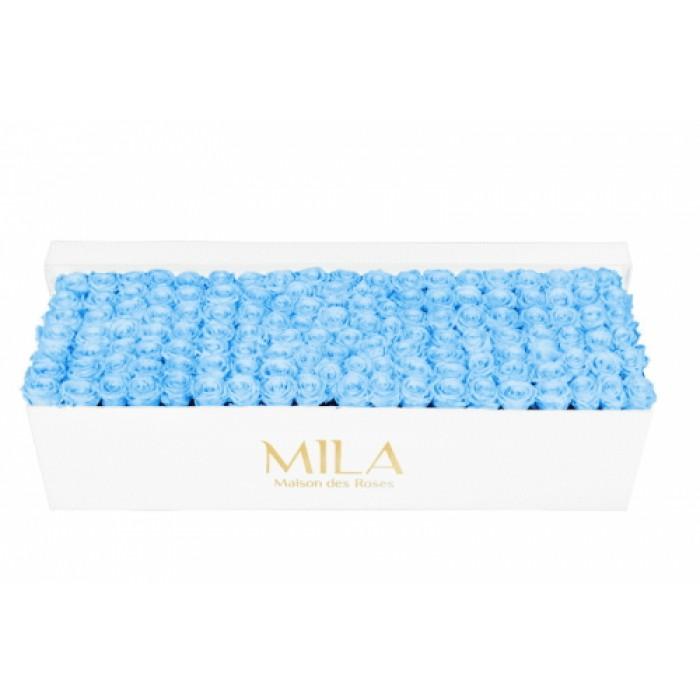 Mila Classic Royal White - Baby blue