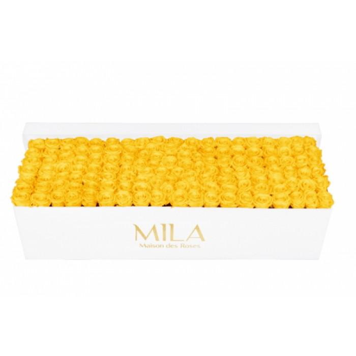 Mila Classic Royal White - Yellow Sunshine