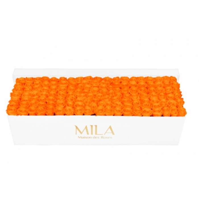Mila Classic Royal White - Orange Bloom